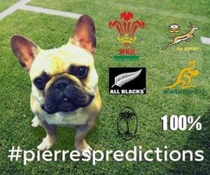 Pierre's Predictions